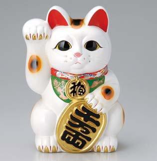 常滑焼 招き猫:貯金箱 白小判付招猫 10号 右手<右手を上げる猫はお金を招く!>
