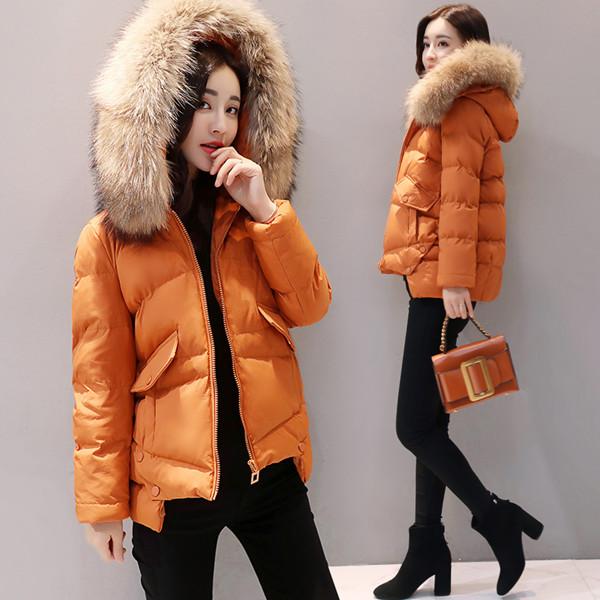 ショート段落ジャケット緩い綿の女性2017冬の新しい女性のコート大きな綿の襟ダウン綿の冬の服