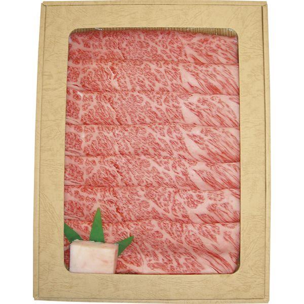 すき焼き用 すき焼き 飛騨牛 牛肉 ロース A5 500g 送料無料
