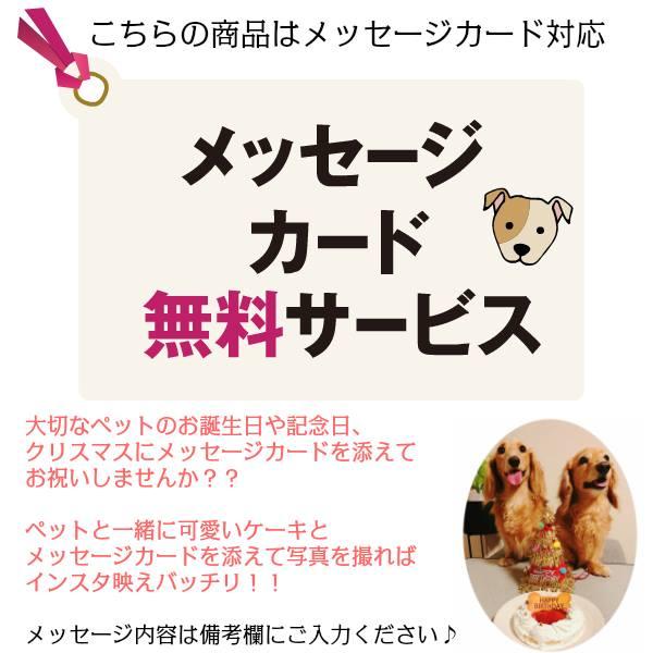 誕生日ケーキ わんちゃん用 犬用 ワンちゃん用 エクレアセット(ベリー味、パンプキン味) ペットケーキ