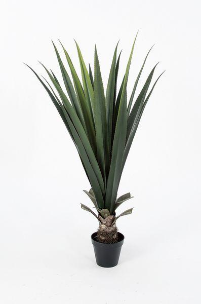 《 造花 グリーン 多肉植物 》Asca/アスカ アロエ(ポット付) グリ-ンエアプランツ サッカレンテン