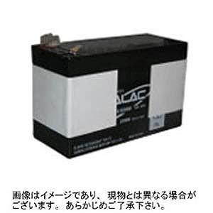APC UPS 交換用バッテリ BE725JP交換用バッテリキット RBC17J(送料無料)