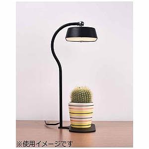 LEDスタンド MST01-BK ブラック 電球色