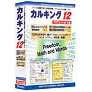 〔Win版〕 カルキング Ver12 プロフェッショナル版 (1ユーザ、3ライセンス付き) カルキング VER12 プロフエツシ