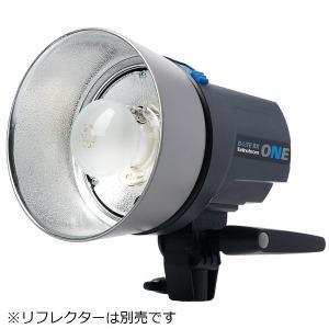 エリンクローム D-Lite RX ONE リフレクターなし(20485.1) 20485.1RXONEヘッド