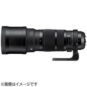 シグマ 望遠レンズ キャノン用 120-300mm F2.8 DG OS HSM (キヤノン)