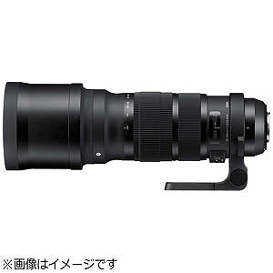 シグマ 望遠レンズ ニコン用 120-300mm F2.8 DG OS HSM (ニコン)(送料無料)