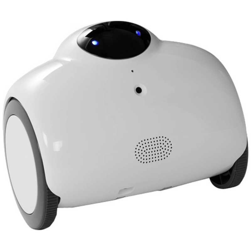RANABABY ネットワークカメラ FAMILY ROBOT RB01‐W