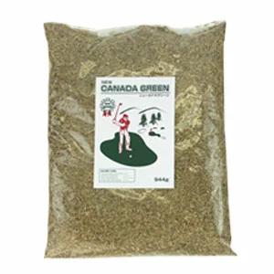 NEWカナダグリーン 常緑芝 芝生の種 カナダグリーングラス ニューカナダグリーン 評価 お金を節約 常緑芝の種 NEWカナダグリーン カナダ産常緑芝