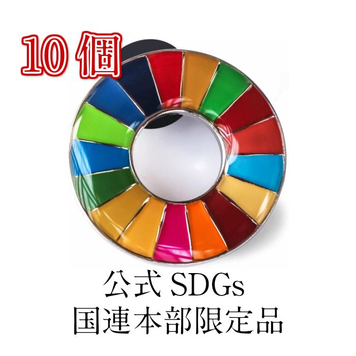 正規販売店 国連本部限定販売 SDGs ピンバッジ 日本未発売 UNDP 人気商品 丸みタイプ 10個 おすすめ バッチ 目標 無料サンプルOK 国連 sdgs 17 正規品 公式