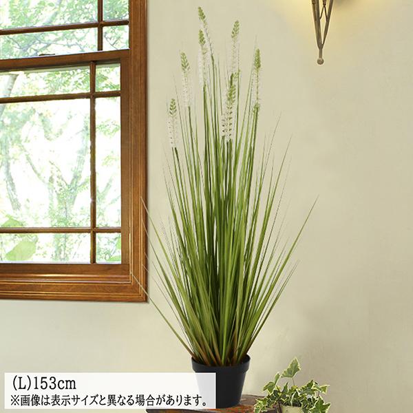 送料無料 ラベンダーグラス フェイクグリーン (L)153cm 人工観葉植物 観葉植物 造花 光触媒 母の日 プレゼント お祝い 開店 開業祝い