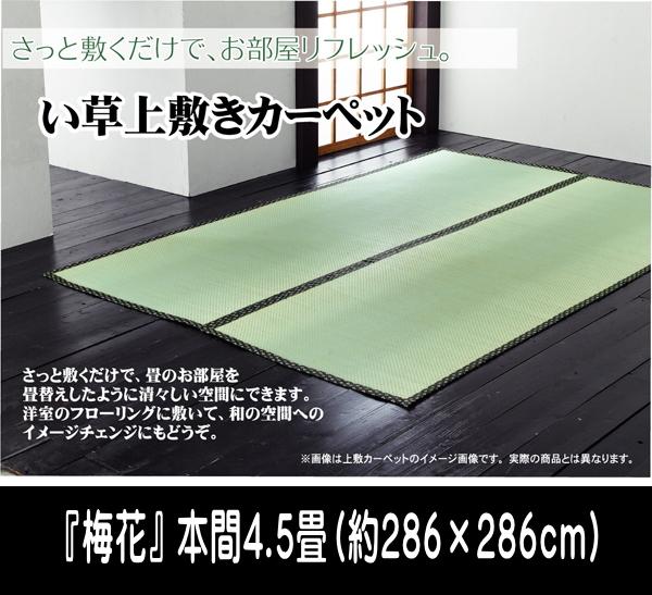 い草 上敷き カーペット 4.5畳 国産 糸引織 『梅花』 本間4.5畳 (約286×286cm) ik-1105184