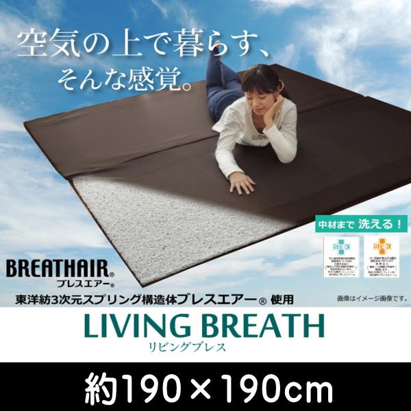 ブレスエアー 東洋紡 BREATHAIR 洗える マット ラグ カーペット 2畳 『リビングブレス』 約190×190cm ik-8230420