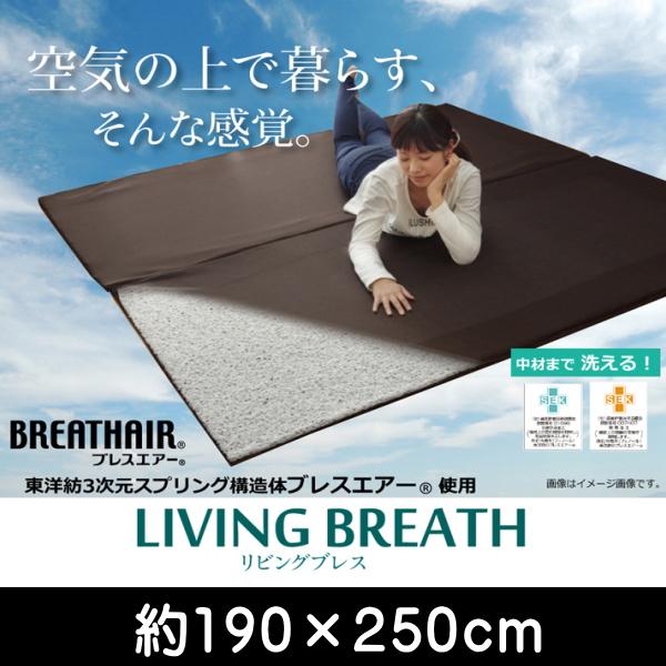 ブレスエアー 東洋紡 BREATHAIR 洗える マット ラグ カーペット 3畳 『リビングブレス』 約190×250cm ik-8230430
