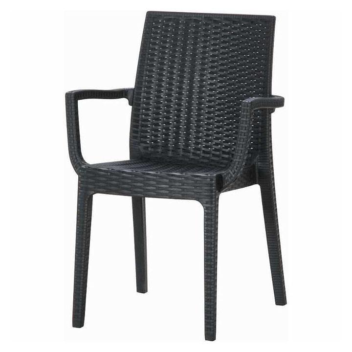 【ガーデンチェア ガーデンファニチャー】ステラ チェアー (肘付) ブラック【ガーデニング 椅子 イス プラスチック製 アウトドア】 11234【D】【FB】