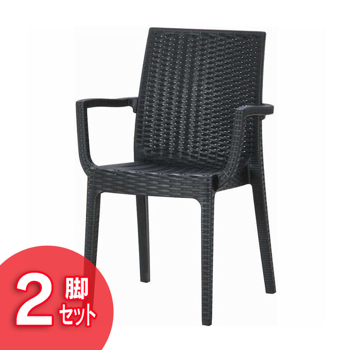 【ガーデンチェア ガーデンファニチャー】≪2脚セット≫ステラ チェアー (肘付) ブラック 11234【ガーデニング 椅子 イス プラスチック製 アウトドア】 【D】【FB】