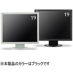 NEC LCD-AS193MI-B5