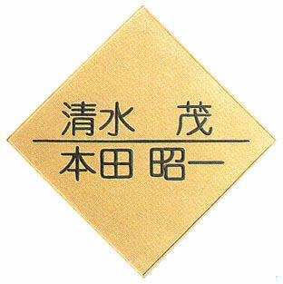 【送料無料】立体陶板表札(戸建・マンション両用タイプの表札)TK-03つやあり【smtb-k】
