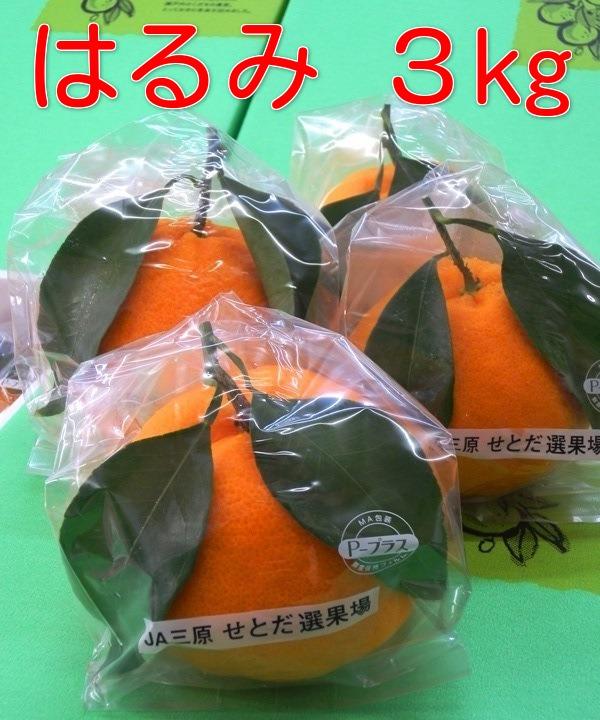 広島の旬の柑橘「はるみ」自然熟「葉付きはるみ」広島「はるみ」みかん3kg箱2月末ごろより順次発送予定【日時指定不可】同梱不可の商品有り
