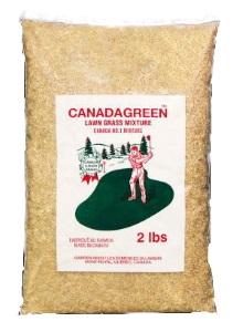 家庭用芝生の種 カナダグリーン, 子供服のキイロイキ:0dabacb8 --- sunward.msk.ru