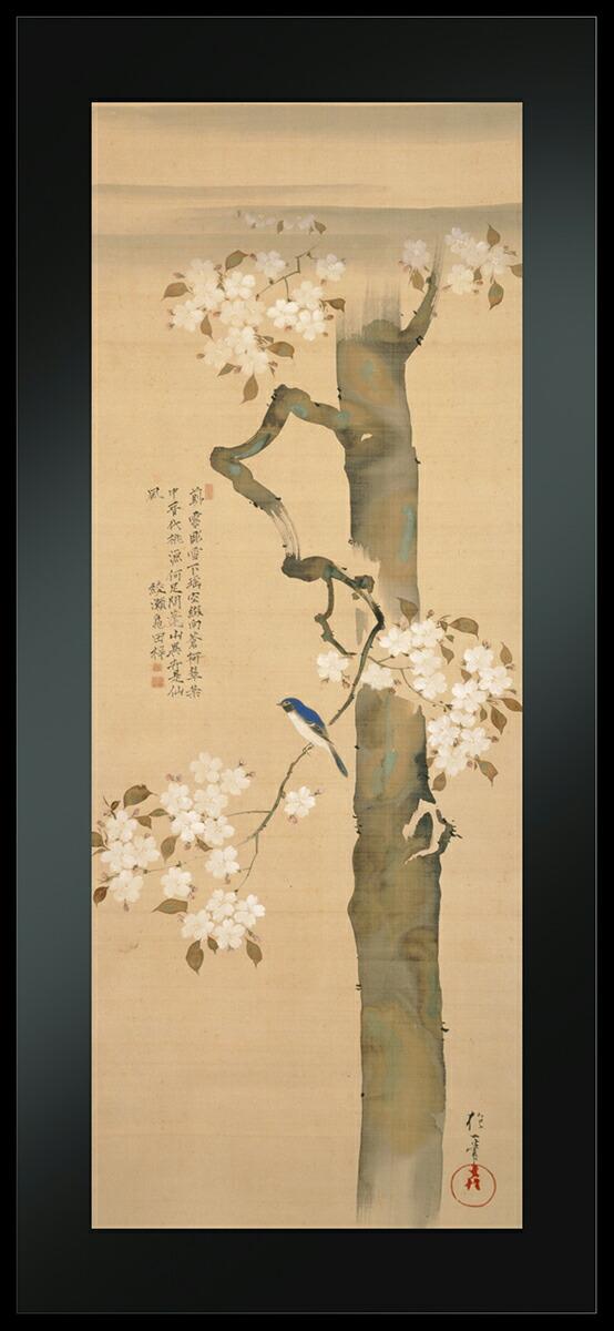 アールプレシ酒井抱一筆「桜に小禽図」