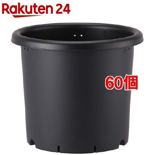 6号 ブラック(60個セット) 菊鉢