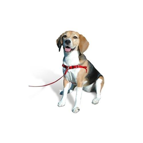 犬にやさしい 引っ張り抑制胴輪 XS ブルー(1コ入)