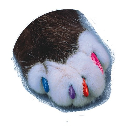 ソフトクロー コンプリートキット ピンク(Sサイズ)【ソフトクロー】