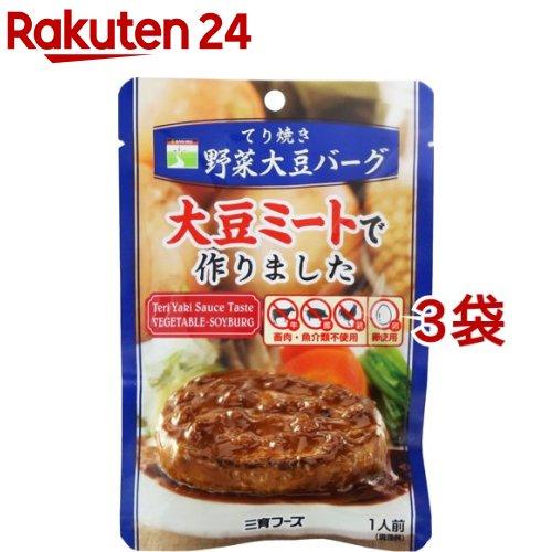 三育フーズ てり焼き野菜大豆バーグ 完全送料無料 100g 新色 3袋セット