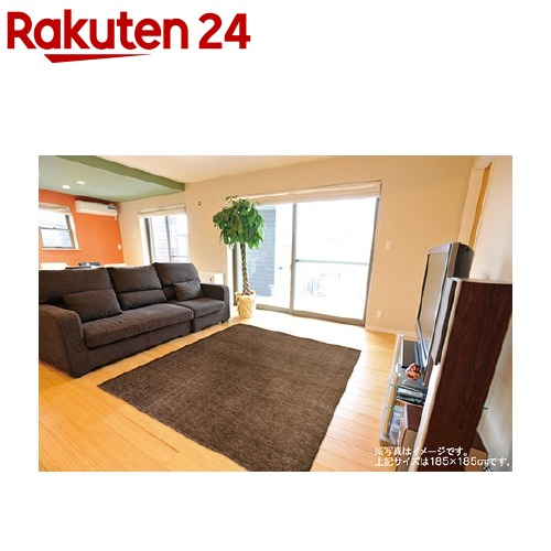イケヒコ モデルノ ラグマット 200*250cm ブラウン フローリング対応 洗濯機OK(1枚入)【送料無料】