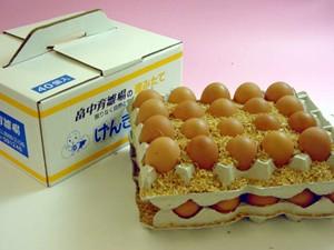 定価 生まれ日の指定はできませんが美味しくて安心 通販 激安◆ 普段使い卵40個入