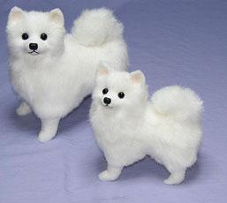 General stuffed / plush toy Spitz / / plush toy Spitz / Japan needs, Spitz dog (S)