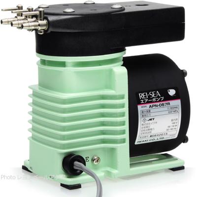 レイシー エアーポンプ本体 APN-057R Hz共用 AC100V 【在庫有り】 北海道沖縄別途送料