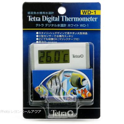全国送料無料 在庫有り 送料無料激安祭 即OK テトラ デジタル水温計 WD1 最安値挑戦 ホワイト