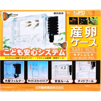 至上 全国送料無料 在庫有り 即OK 日本動物薬品 プラス 産卵ケース ベビーボックス パッケージオレンジ 数量限定