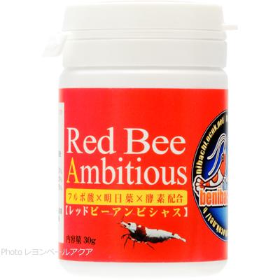 紅蜂 レッドビーアンビシャス 30g 【在庫有り】