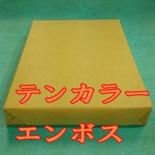 テンカラーエンボス皮しぼ うす緑 151.3gm2(130kg) A3 Y 400枚(代引不可)【int_d11】