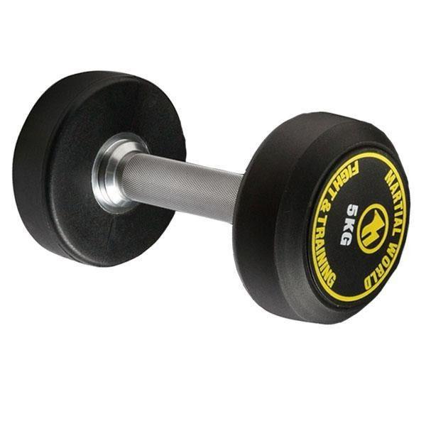 ポリウレタン固定式ダンベル 10kg UD10000(代引き不可)