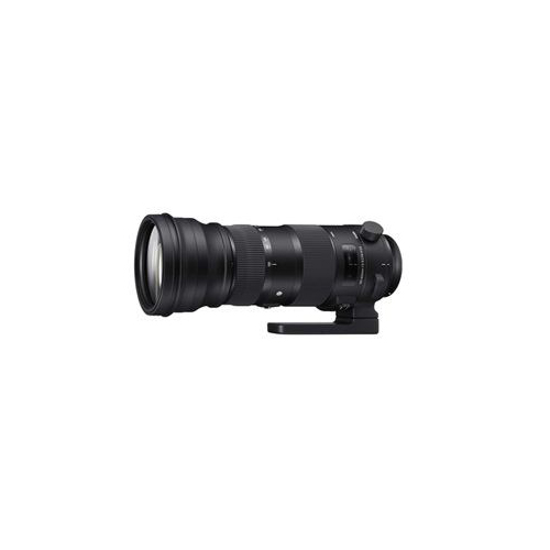 SIGmA F5-6.3 DG OS HSm(シグマ) 150-600mm 150-600F5-6.3DGOSHSm(代引不可)【送料無料】
