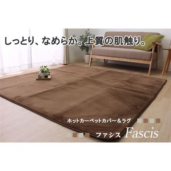 ラグ カーペット 3畳 抗菌 防臭 『ファシス』 ブラウン 約185×240cm 裏:すべりにくい加工(ホットカーペット対応)