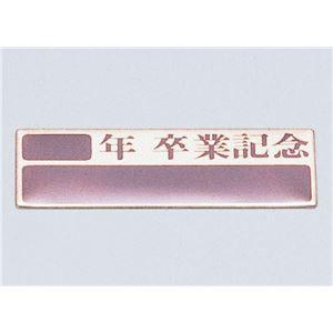(まとめ)アーテック 卒業記念プレート(10枚組)アルミ製 【×15セット】