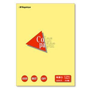 (業務用50セット) Nagatoya カラーペーパー/コピー用紙 【B4/特厚口 50枚】 両面印刷対応 クリーム ×50セット