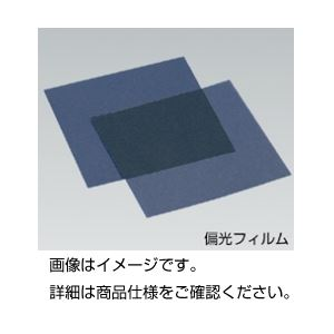 (まとめ)偏光フィルム 薄手Sサイズ 124mm角10枚【×3セット】