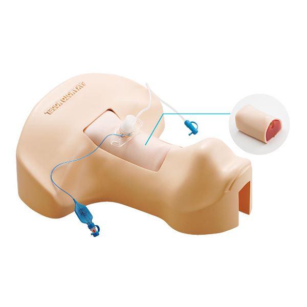 サカモト気管切開トレーナー(看護実習モデル人形) 気管/表皮//収納ケース付き M-172-0【代引不可】