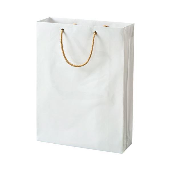 (まとめ) TANOSEE ビニールカバー付手提げ袋 M ヨコ330×タテ440×マチ幅110mm 白無地 1パック(10枚) 【×10セット】