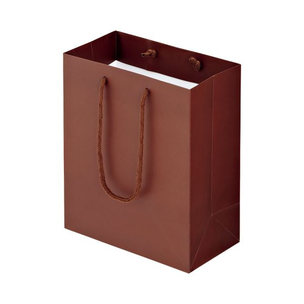 (まとめ) TANOSEE マットコート手提げ袋 S ヨコ220×タテ260×マチ幅120mm ブラウン 1パック(10枚) 【×10セット】
