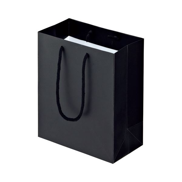 (まとめ) TANOSEE マットコート手提げ袋 S ヨコ220×タテ260×マチ幅120mm ブラック 1パック(10枚) 【×10セット】