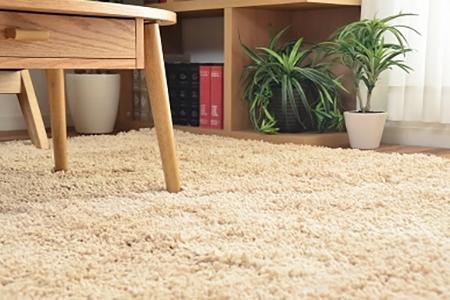 ラグ 長方形 洗える 北欧 マット カーペット シャギーラグ 絨毯 じゅうたん Feirder 200×250cm(代引不可)【送料無料】
