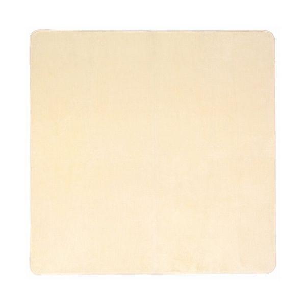 洗えるミンクタッチラグ 約200×300cm IV(代引不可)【送料無料】
