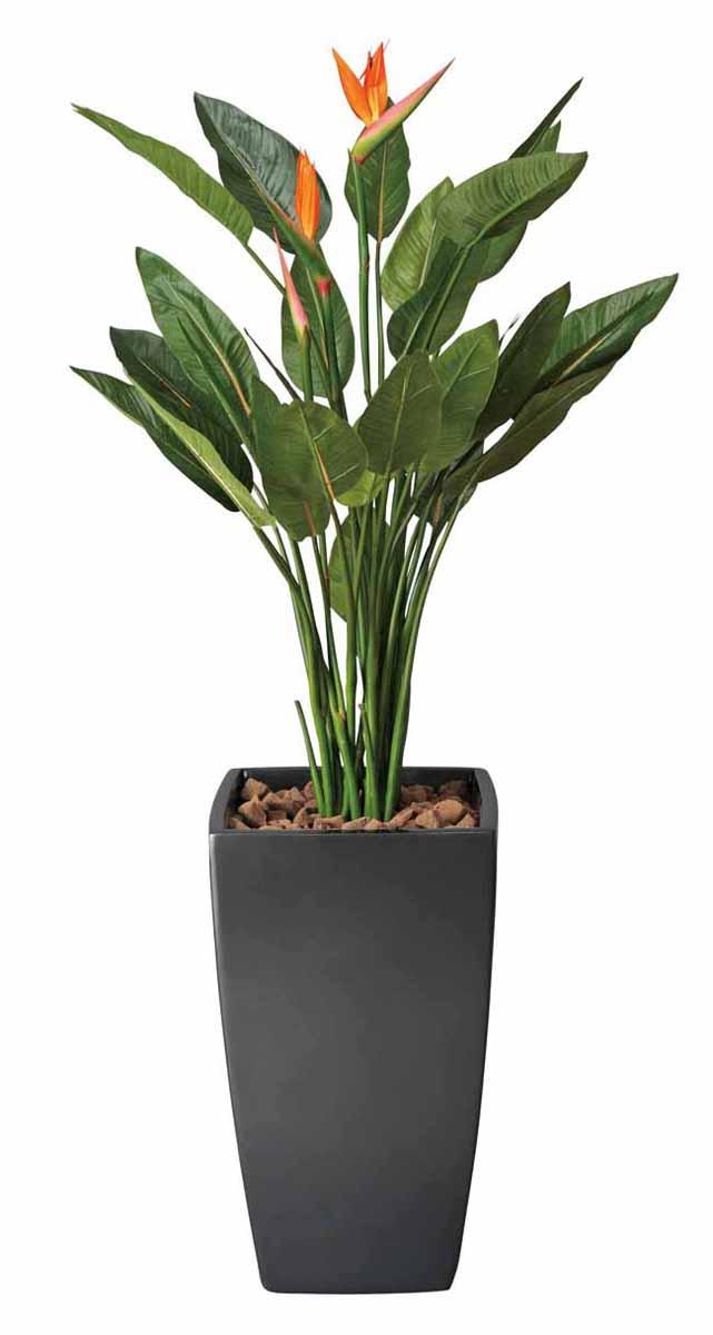 アートグリーン 人工観葉植物 光触媒 光の楽園 アートストレチア花付1.8(代引き不可)【送料無料】【int_d11】